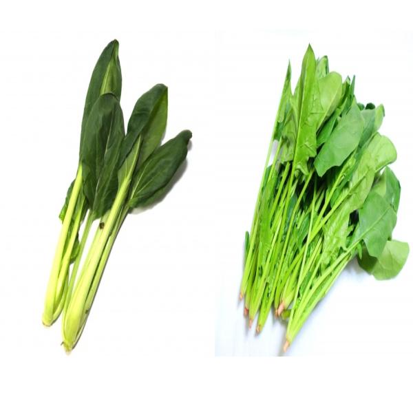 小松菜とほうれん草